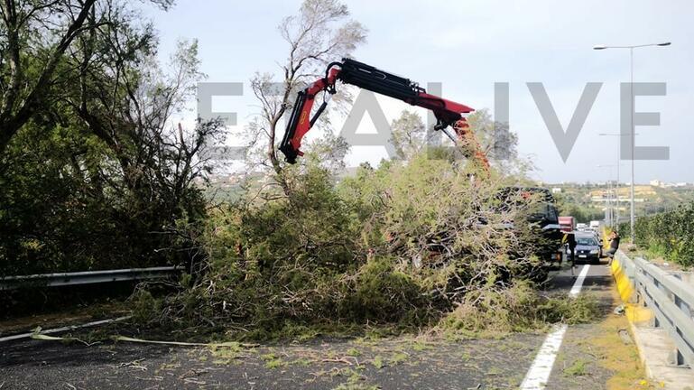 Η πτώση του δέντρου σταμάτησε την κυκλοφορία στην εθνική οδό!